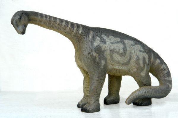 Camarasaurus klein
