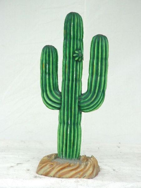 Kaktus klein