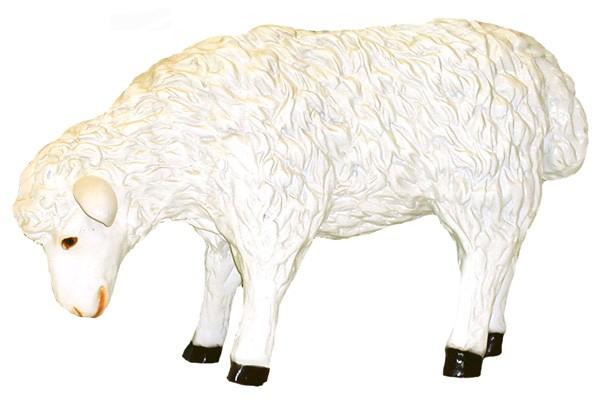 Schaf stehend klein