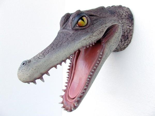 Alligatorkopf