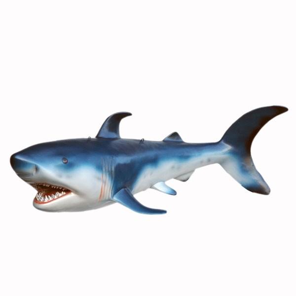 Baby Hai / Shark