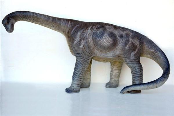 Camarasaurier