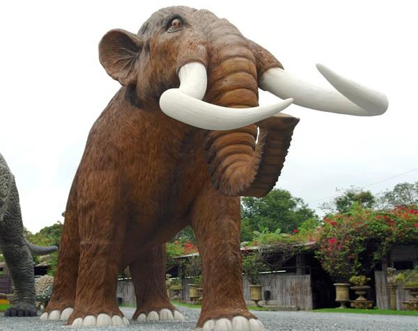 Mammut XXL