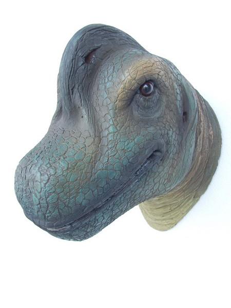 Saurier Brachiosaurierkopf