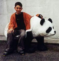 Panda als Sitzbank