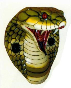 Cobrakopf