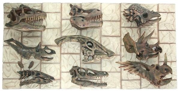 dinosaurier kopf fossilien walt deko. Black Bedroom Furniture Sets. Home Design Ideas
