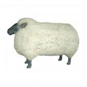 Schaf mit schwarzem Kopf sehr groß
