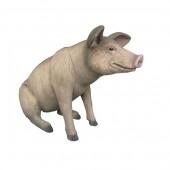 Kleines sitzendes Schwein