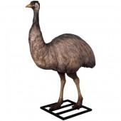 Emu lebensgroß