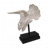 Triceratops Schädel auf Sockel