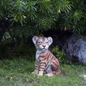 Tigerbaby sitzend