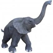 laufender Babyelefant