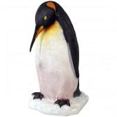 Pinguin auf Eis