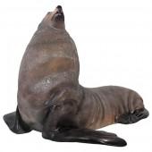 männlicher Seebär