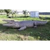 riesen Krokodil