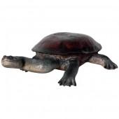 Langhalsschildkröte