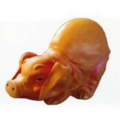 lustiges Schwein Po oben