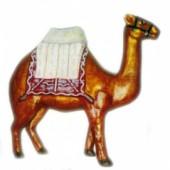kleines Kamel mit Sitz