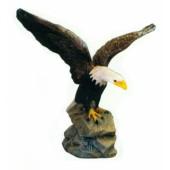Weißkopfseeadler breitet Flügel aus