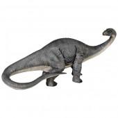 kleiner Apatosaurus
