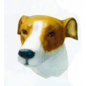 Greyhound Kopf