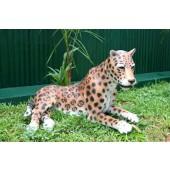 Leopard liegend
