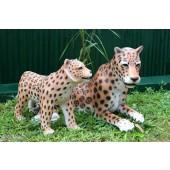 Leopard liegend mit Baby