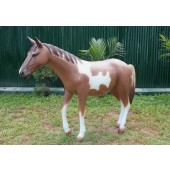 Pony hellbraun weiß