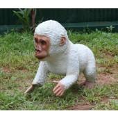 Weißer BabyGorilla