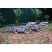 Alligatoren (2 Stück)