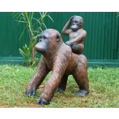Orangutan mit Baby