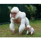 Weißer Gorilla mit Baby 1