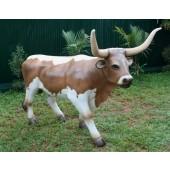 Kuh mit großen Hörner
