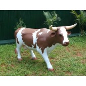 Braunweiße Kuh