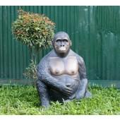 Gorilla sitzend