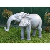 Elefant Rüssel unten