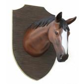Pferdekopf auf Holz groß