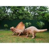 Dinosaurier Dimetrodon und Triceratops klein