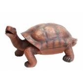 Getränkefach in der Schildkröte
