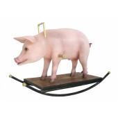 Schwein Schaukel