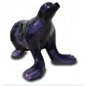 Seelöwe Seerobbe schwarz