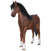 Braunes Ponny