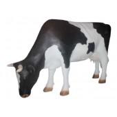 Kuh fressend