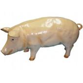 lebensgroßes Schwein
