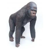 Affe Gorilla