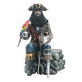 Pirat Blackbeard mit Papagei