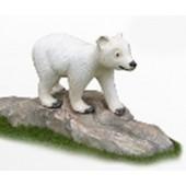 kleiner weißer Bär auf Fels