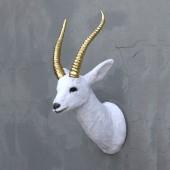 weißer Gazellenkopf mit goldenem Geweih