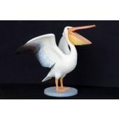 Pelikan mit offenem Maul
